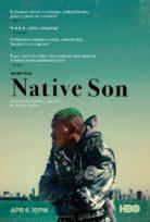 Vatan Evladı – Native Son izle Türkçe Dublaj