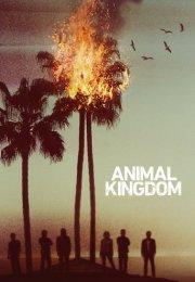 Animal Kingdom 1. Sezon 3. Bölüm